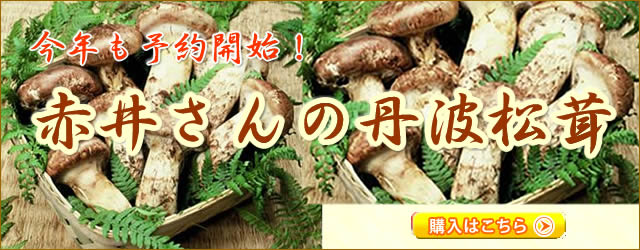 赤井さんの丹波松茸