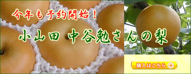 小山田中谷農園の梨