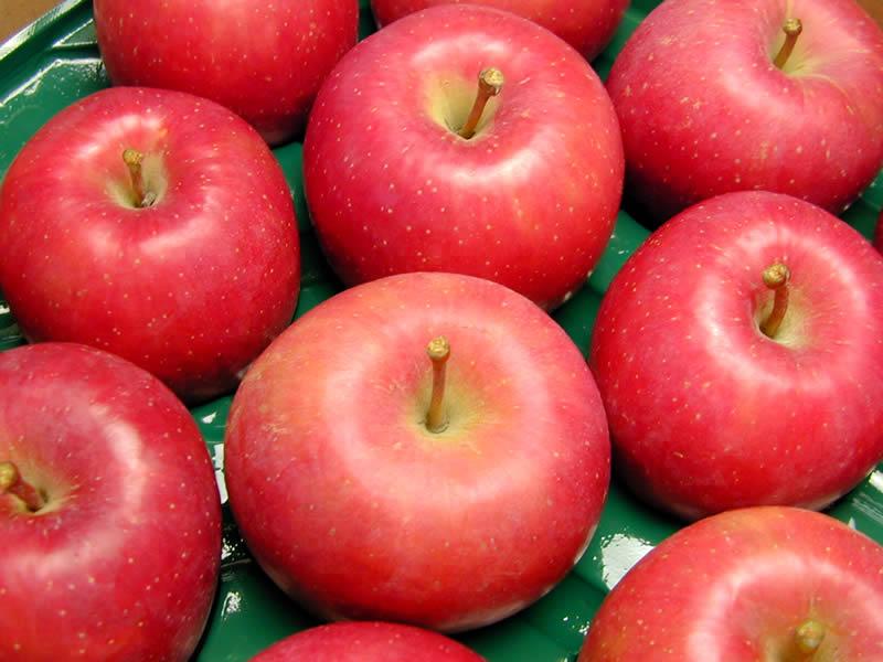 伊藤農園のりんご紅将軍