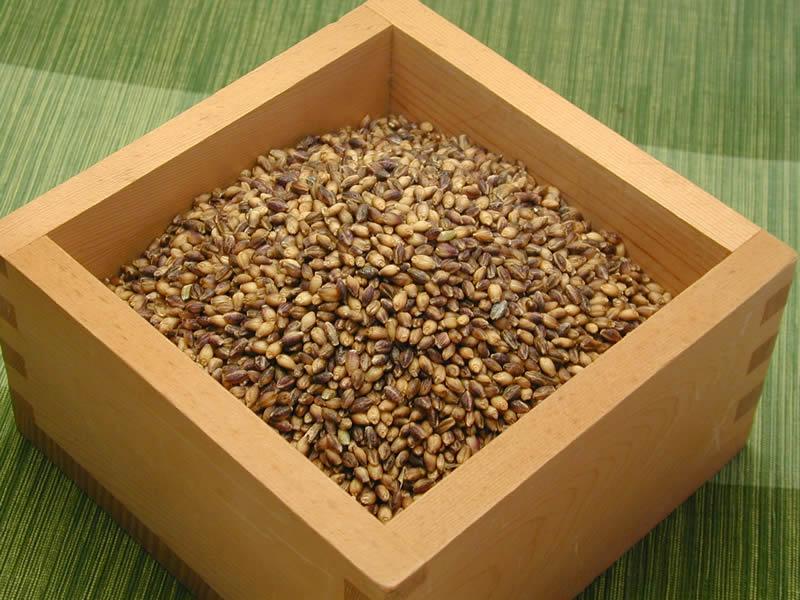 里山てるてるファームのもち麦
