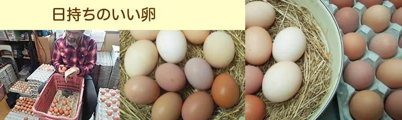 日持ちのよい卵