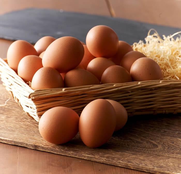 たまごや通心夢そだち卵