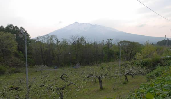 片山りんご園から見た岩木山