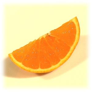 カットした清見オレンジ