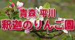 青森県平川市釈迦のりんご園